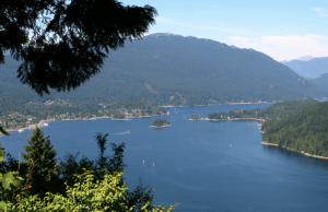 A Closer Look at Burnaby Mountain Park