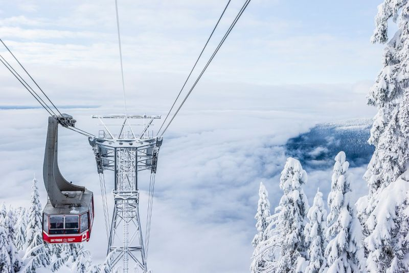 5 Things To Do On Grouse Mountain For Family Day