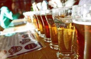 Diploma In Beer Now On-Tap At Kwantlen