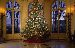 Where To Buy A Fresh Christmas Tree In Metro Vancouver