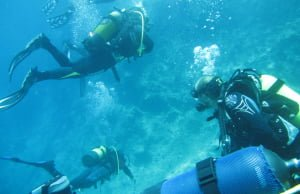 5 Reasons to Scuba Dive in Vancouver