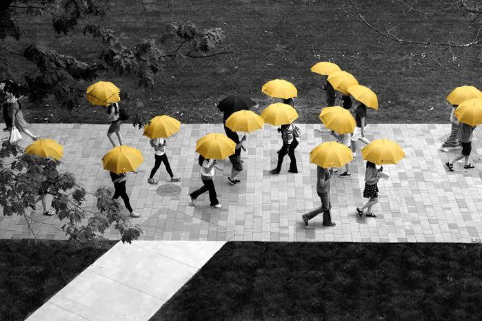 UmbraCity: New Umbrella Sharing Service Has Got You Covered