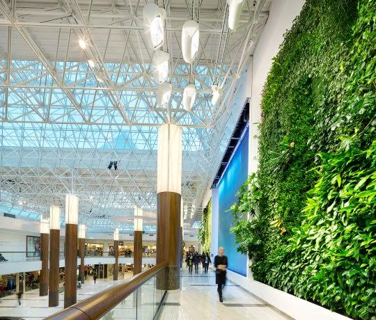 Surrey has the largest living wall in north america 604 now for Green wall vancouver