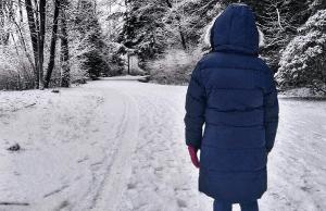 snow-burnaby