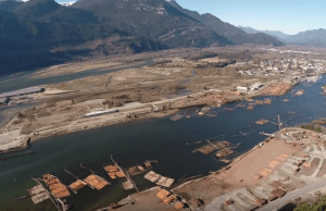 What A Bird Sees Flying Over Vancouver (Aerial Video)