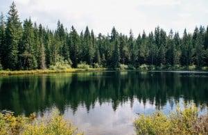 604 Trails: Alice Lake In Squamish