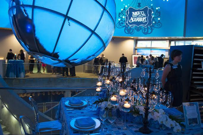 Night At The Vancouver Aquarium 2016 604 Now