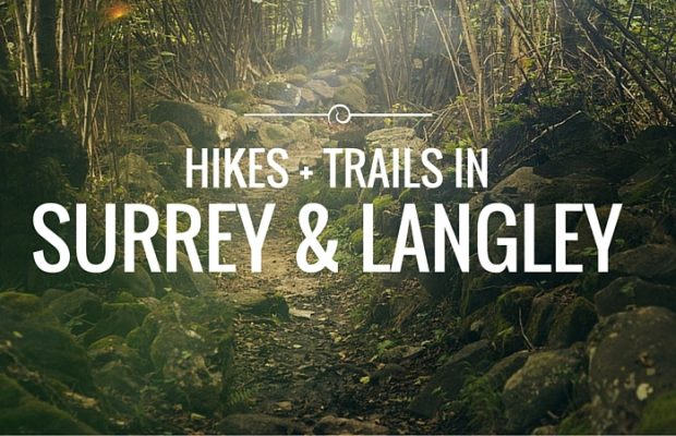 Best Hikes And Trail Walks In Surrey/Langley