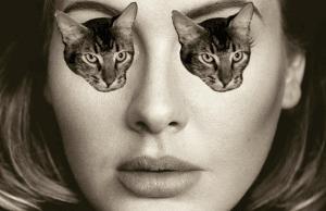adele vancouver cat cafe catfe