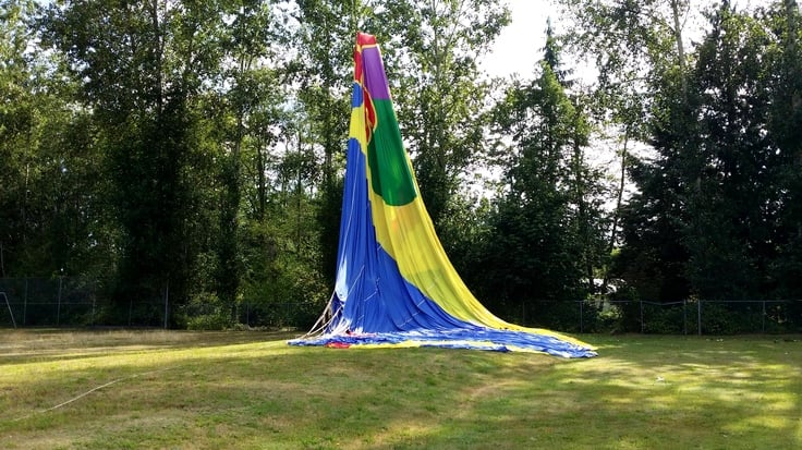 Hot Air Balloon Crashes Into A Tree in Langley