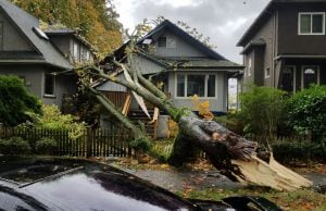 BC Storm / weather disasters