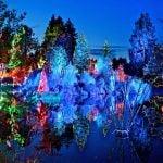 VanDusen Festival of Lights 2017