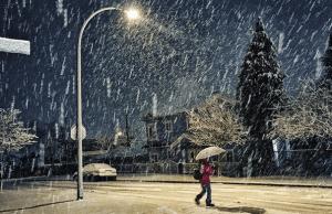 Metro Vancouver Wakes Up To First Snowfall Of The Season (Photos)