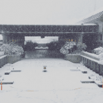 SFU Burnaby Closes Down Campus For The Day