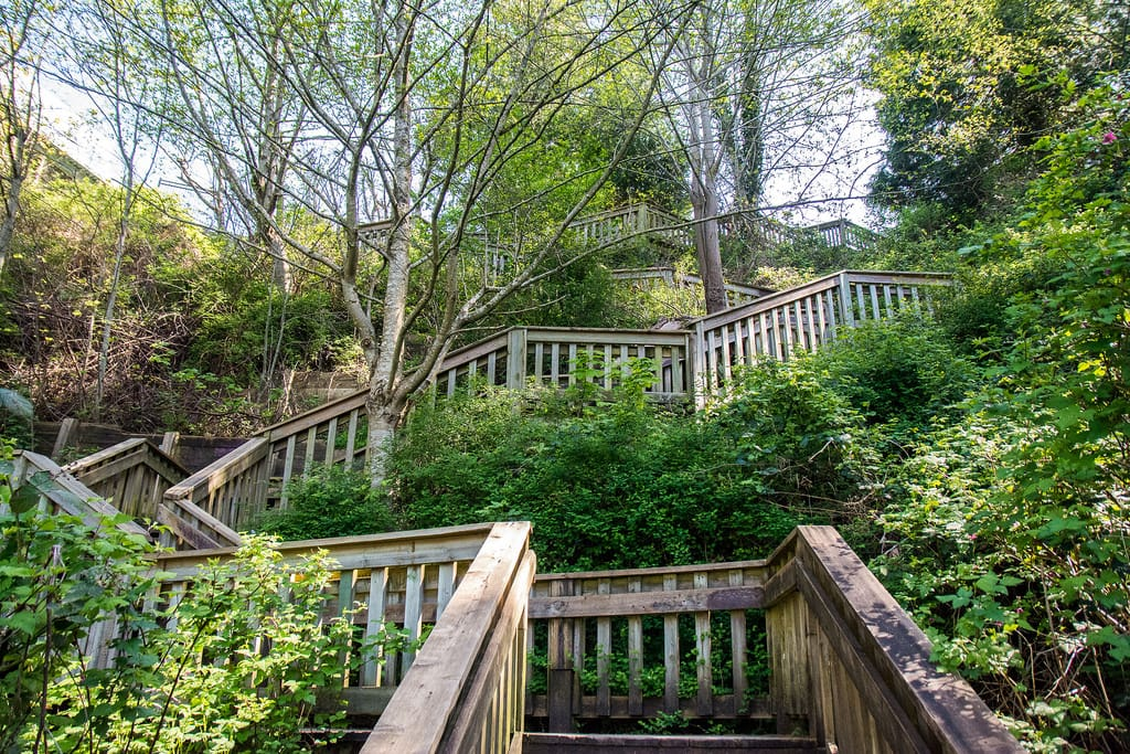 1001 steps park