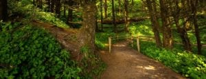 easy hike trail vancouver