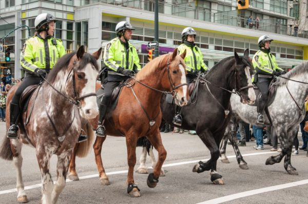 VPD Mounted Unit Squad