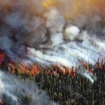 Everything You Need To Know About The BC Wildfires