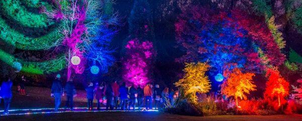 Garden Light Festival