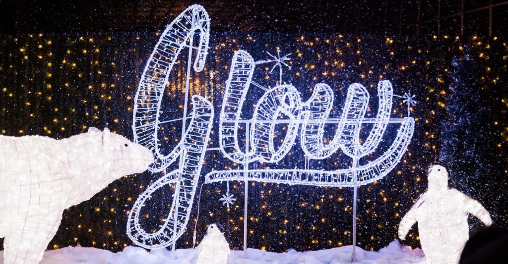 Glow Christmas Light Garden and Market