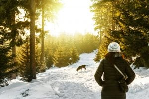 winter escapes