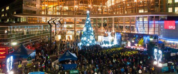 Glow Christmas Light Garden & Market To Feature 210ft