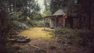Get Back To Nature At This Cozy Cabin In The Woods On Galiano Island