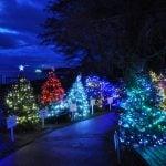 Dundarave Festival of Lights West Vancouver 2017