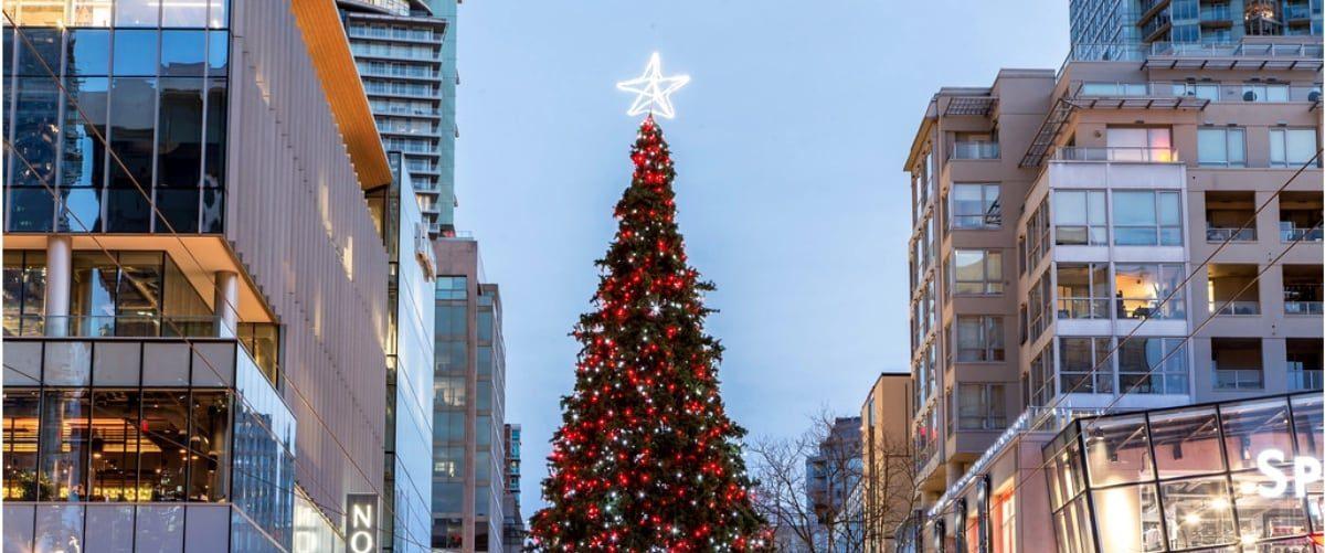 Vancouver Christmas Tree Lighting