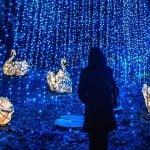 Heritage Christmas Burnaby 2018