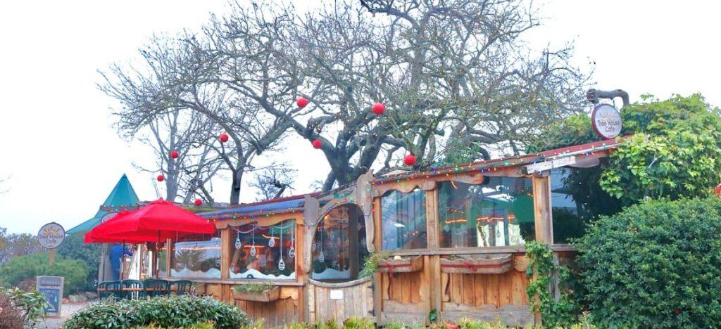 tree house cafe bc
