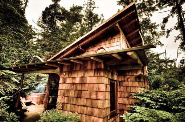 treetop loft