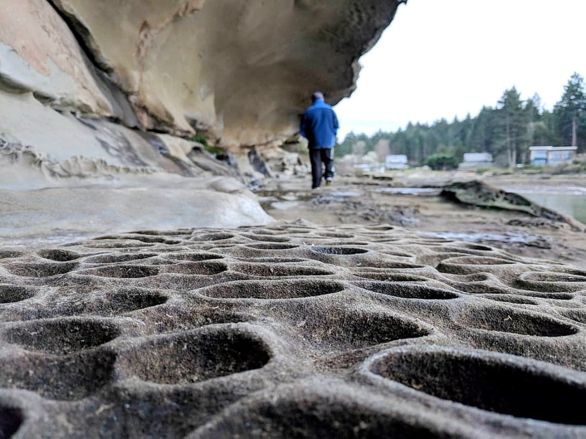The Wave Nanaimo >> You Must Explore BC's Majestic Malaspina Galleries On ...