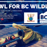 Bowl for BC Wildlife 2018