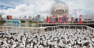 1600 Pandas+ World Tour
