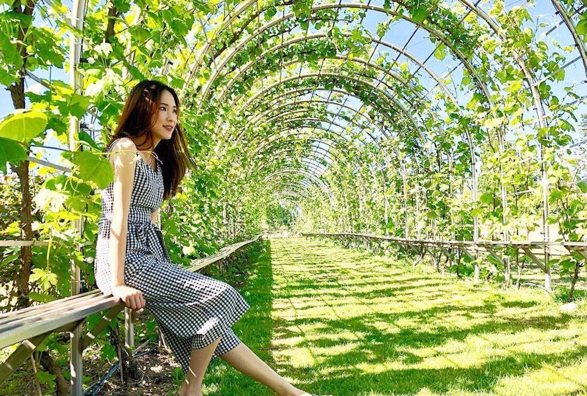 grape tunnel