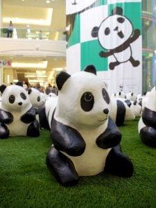 Metrotown Panda Exhibit