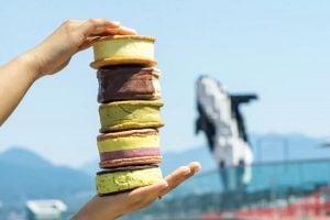 ice cream sandwich pop-up