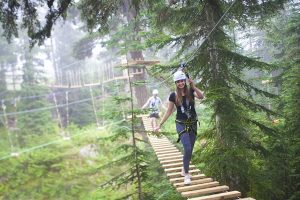 Grouse Mountain adventure course