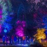 Bear Creek Park Light Festival 2018