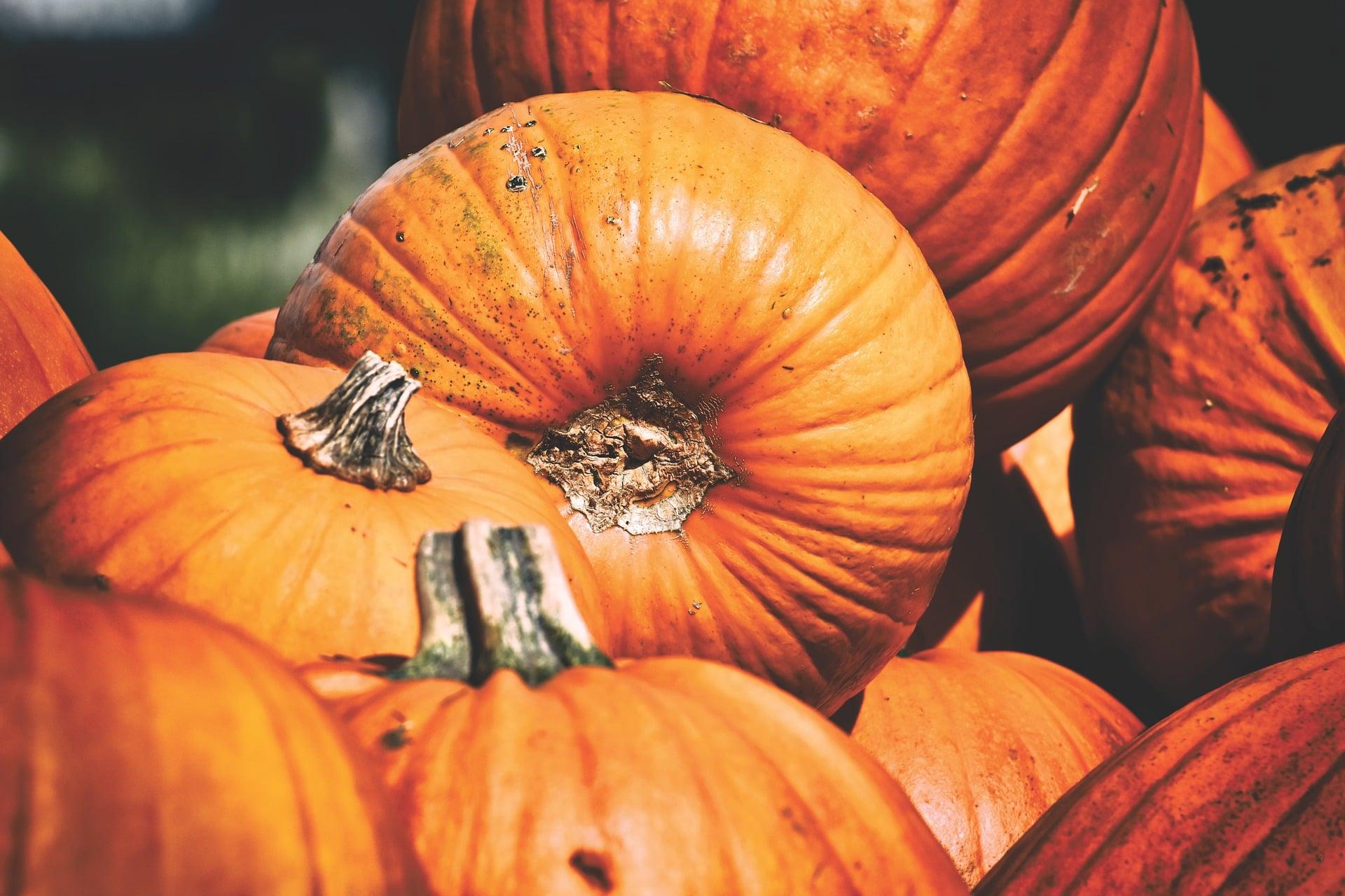 Spooktacular Halloween Market