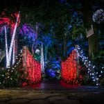 Holiday Heights at Bloedel Vancouver 2018