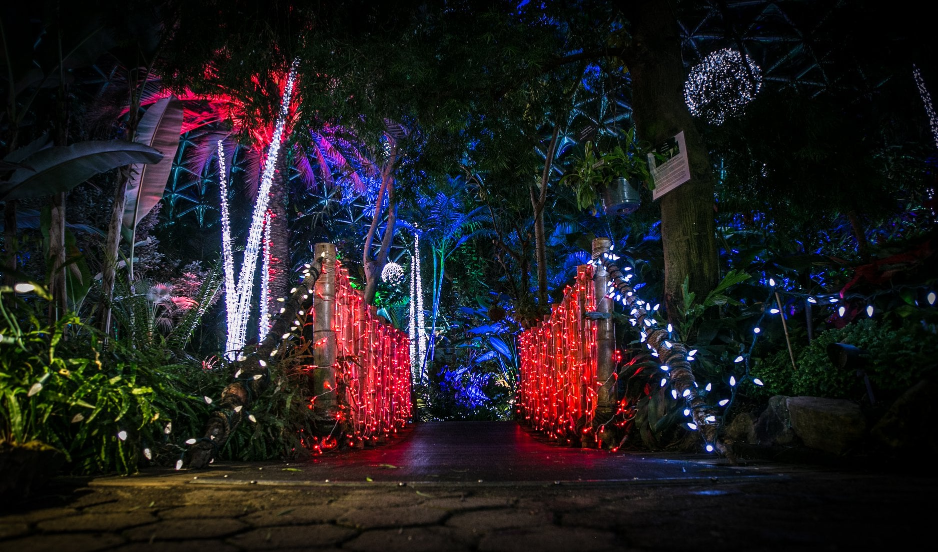 Holiday Heights at Bloedel
