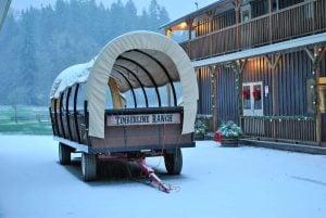 Timberline Country Christmas