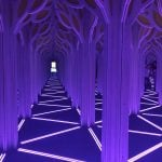 A Mirror Maze: Numbers in Nature Vancouver 2019