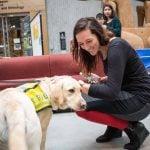 SFU Puppy Therapy 2019