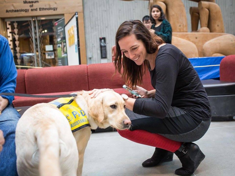SFU Puppy Therapy