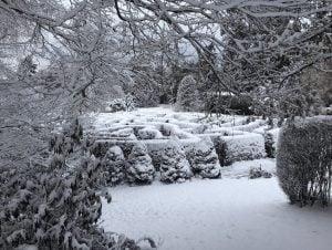 VanDusen Botanical Garden Looks Like An Enchanting Winter Wonderland (PHOTOS)