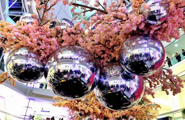Blossom at Metropolis