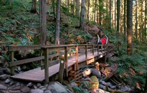 spring hikes in vancouver